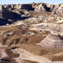 #Vinecations: Arizona's Petrified Forest